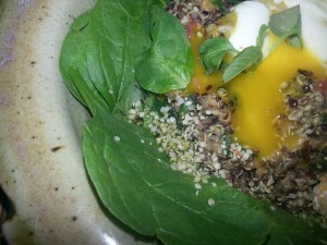 a REAL meal!  All organic, and local.  Spinach, quinoa, tomato, egg, hemp seeds, hemp seed oil...mmm Sensual Food